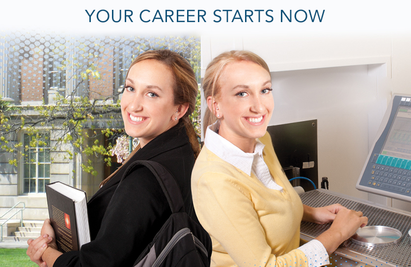 Your Career Starts Now