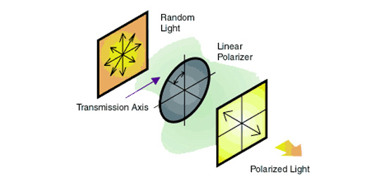 Successful Light Polarization Techniques